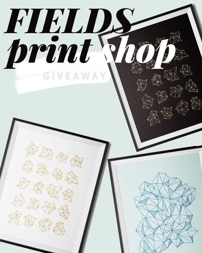 Minimalist screen prints by FIELDS Print Shop | Giveaway on Thou Swell