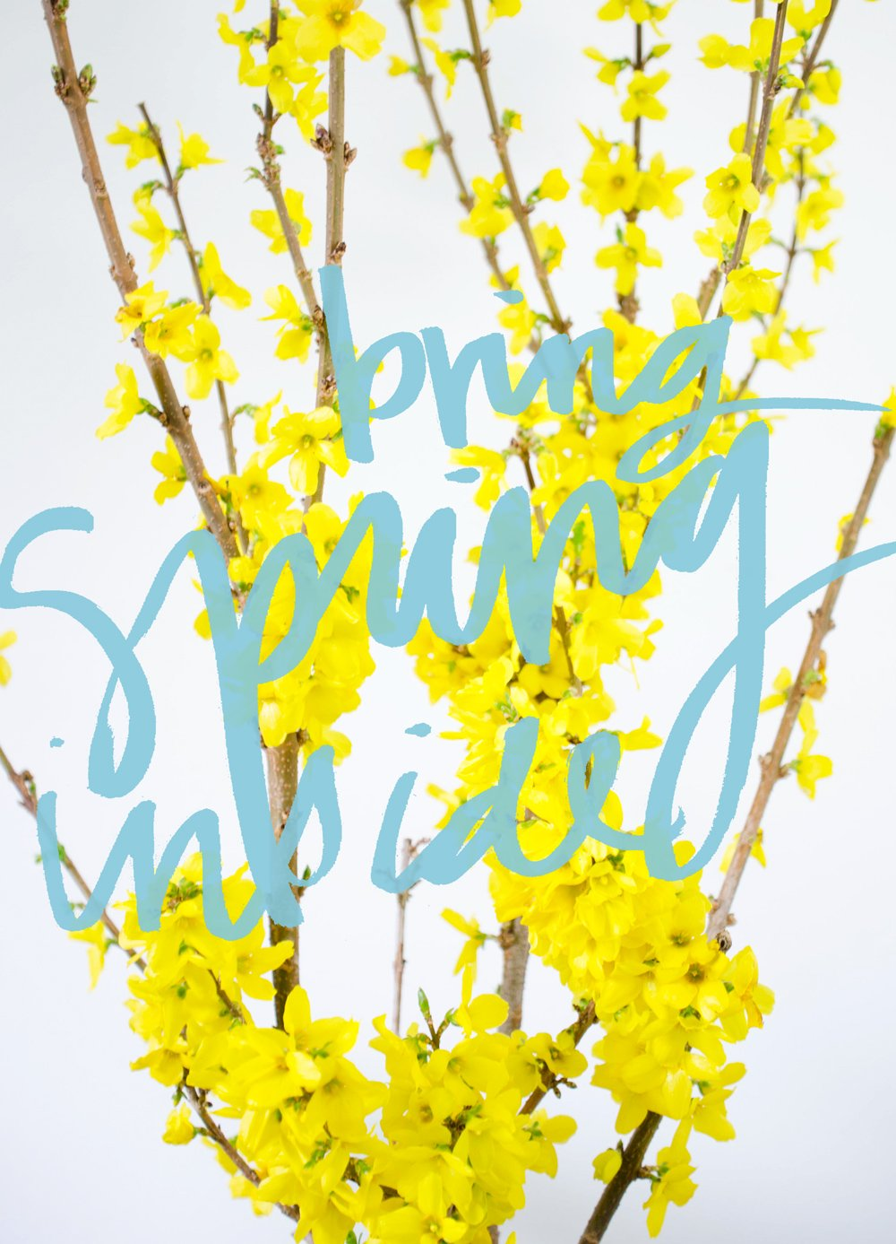 EARLY BLOOMING: BRING SPRING INSIDE https://thouswell.com/early-blooming-bring-spring-inside/