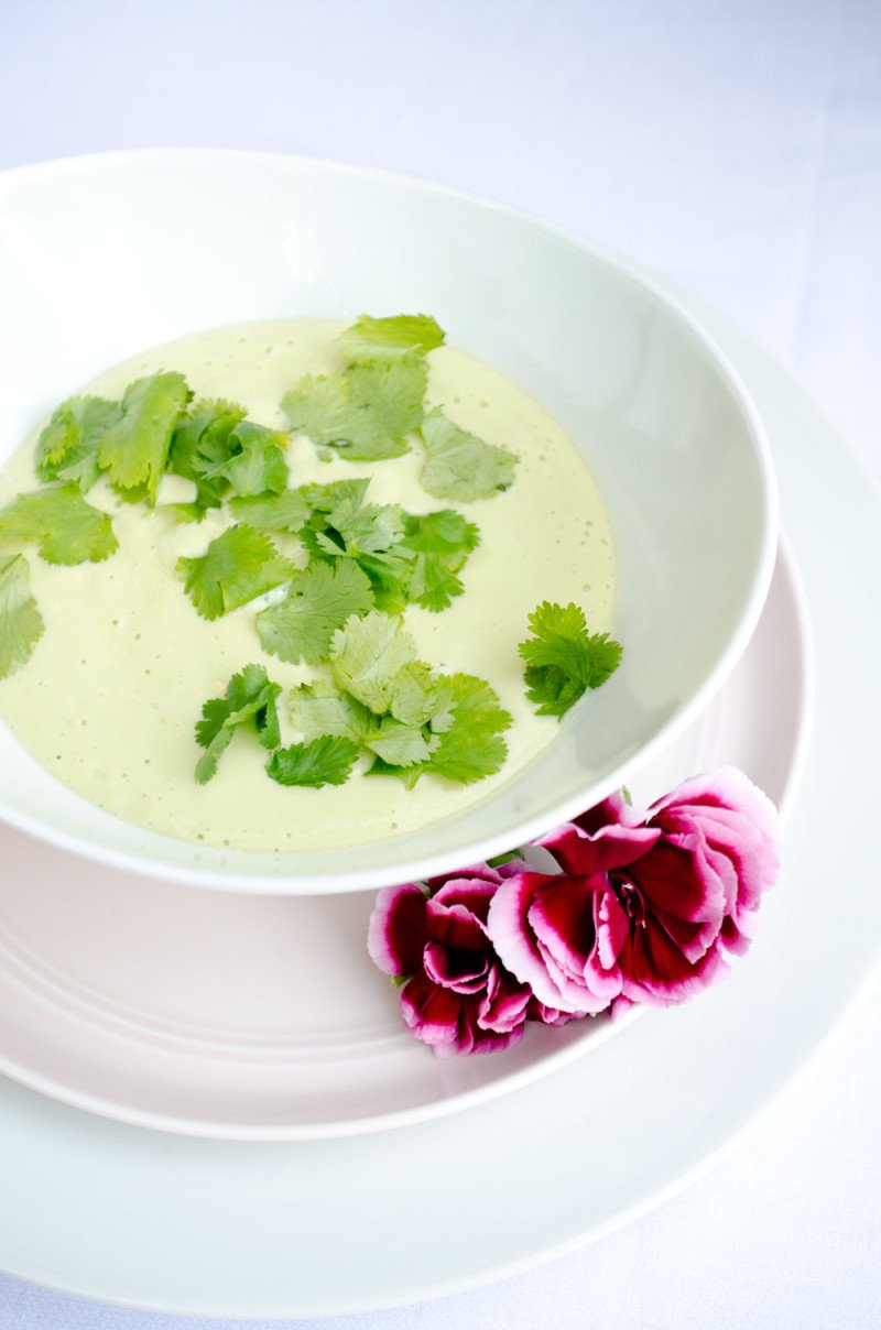 This delicious chilled avocado soup recipe is quick and easy to make with yoghurt and lime juice and is a perfect summer entrée.