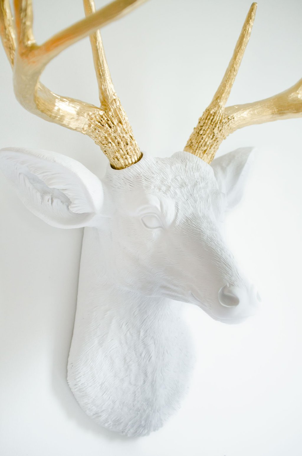 White faux taxidermy with gold antlers via @thouswellblog