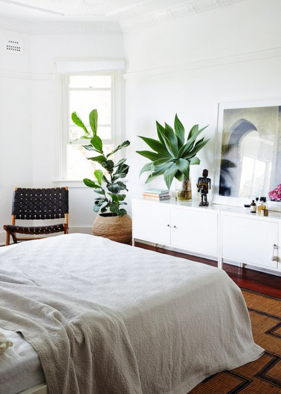 Modern bedroom with plants via @thouswellblog