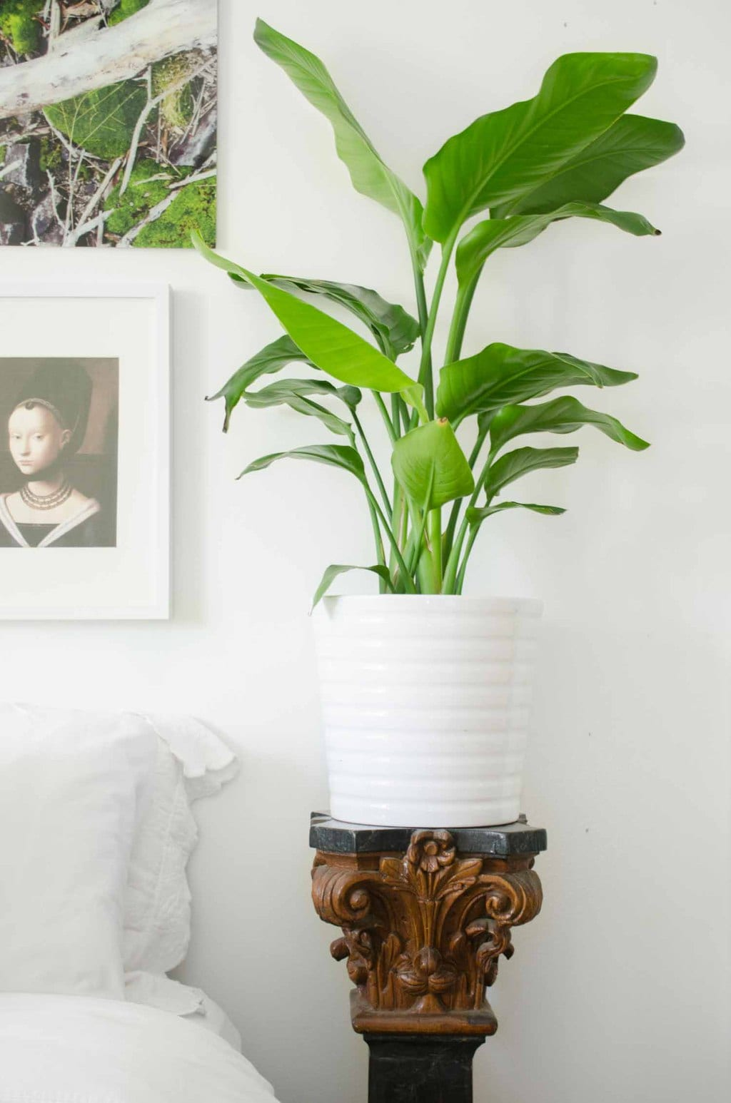 Eclectic bedroom with plant on column via @thouswellblog