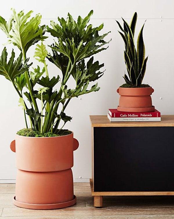Commune for west elm terracotta planter via @thouswellblog
