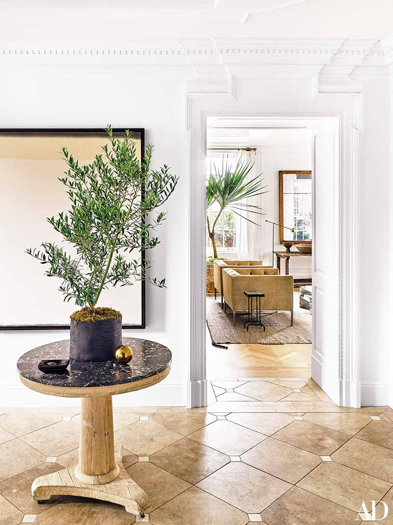 Indoor olive tree in Nate Berkus' entry on Thou Swell @thouswellblog