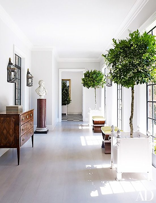 Bright white hallway gallery with indoor potted trees on Thou Swell @thouswellblog