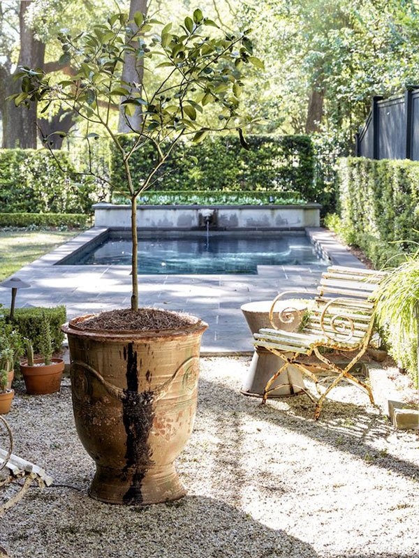 Stunning backyard pool in New Orleans on Thou Swell @thouswellblog