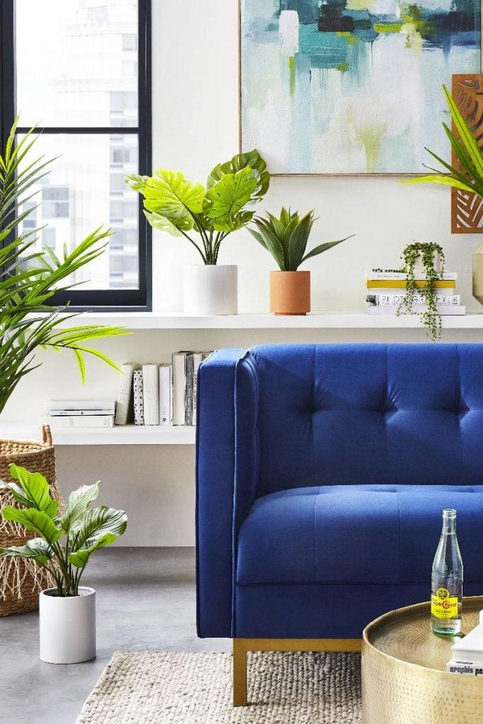 Blue velvet sofa with lots of plants in a modern living room on Thou Swell #livingroom #bluesofa #indoorplants