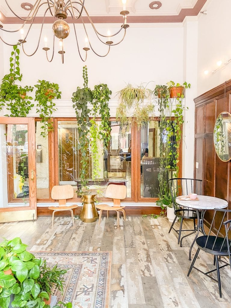 Sleepyhead Coffee cafe with plants in Chattanooga city guide weekend tour on Thou Swell #chattanooga #chattanoogaguide #cityguide #travelguide #travel #cafe